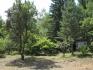 Парцел във вилна зона Драгалевци, граничещ с борова гора на парк Витоша, до ул. Лешникова...
