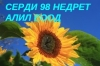 СЕРДИ 98 НЕДРЕТ АЛИЛ