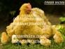 Люпилни за люпене на яйца