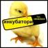 Инкубатори-Люпилни за люпене на яйца