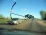 Автостъкла, лепене на пукнатини в Септември, Пазарджик