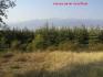 Вилен парцел с фантастична панорама към Рила, връх Мусала и ски пистите на Боровец