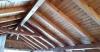 Първокласен дървен материал-Ламперия; Дюшеме от Дървесина за Вашия дом и Градина
